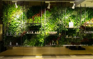 SENSI Green Living Wall